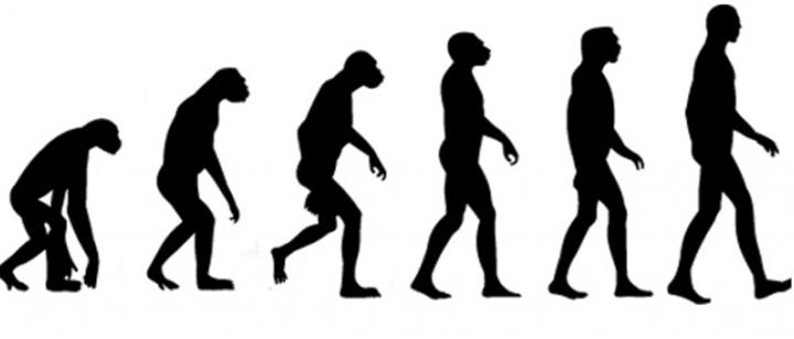 Evolution – Darwin
