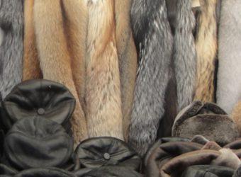 Pelz und Leder