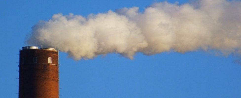 der Kohlenstoffausstoß | menschliche Ursache